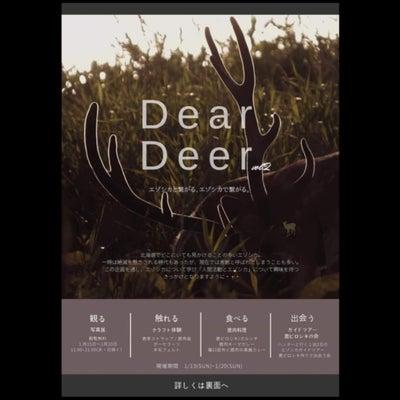 Dear Deerの記事に添付されている画像