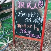 成人式( ^ω^ )の記事に添付されている画像