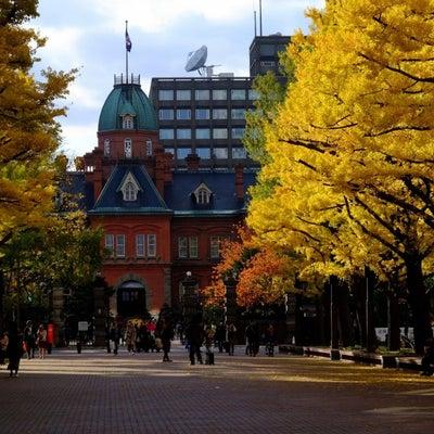 紅葉の札幌…7の記事に添付されている画像