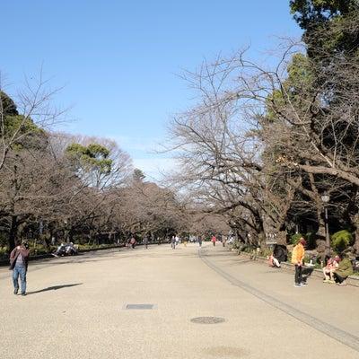 東京メトロ銀座線で初詣 2の記事に添付されている画像