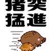2019/01/16の画像