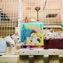 おじさまと猫 2の記事に添付されている画像