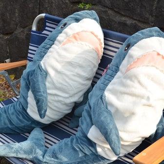 イケアのサメのぬいぐるみが、世界中で大ヒットしているそうですが、、、