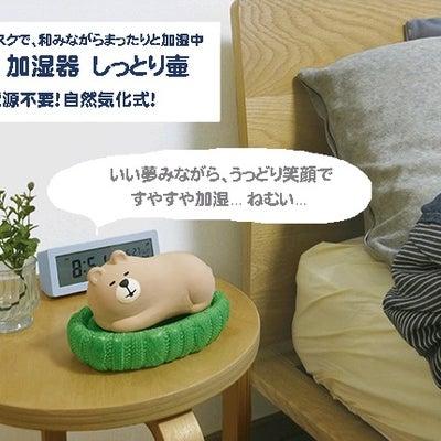 しっとりすやすや♡電源を使わないミニ加湿器が人気ですの記事に添付されている画像