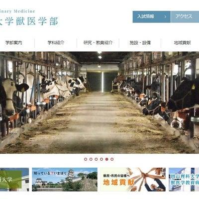 岡山理科大獣医学部のHPの牛の写真は無料素材!の記事に添付されている画像
