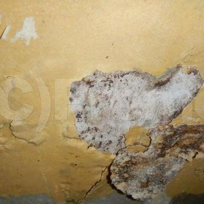 壁紙コンクリート下地パテによるカビ隠しの記事に添付されている画像