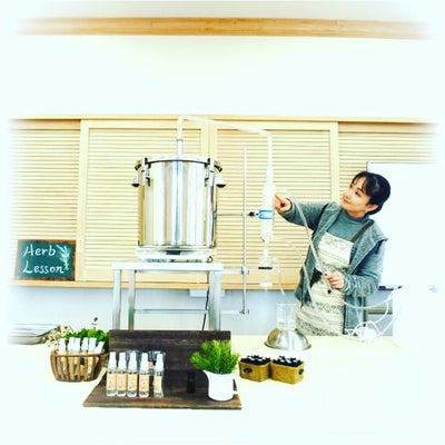 水蒸気蒸留法でローズマリーを蒸留の記事に添付されている画像