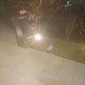 #ライトアップの画像