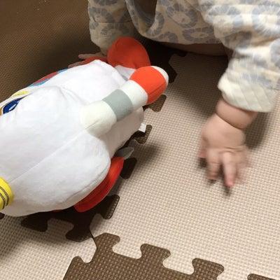 双子ちゃんデー★月齢10ヶ月★生後330日の記事に添付されている画像