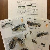 煮干de解剖実験_5歳10ヶ月&2歳9ヶ月の記事に添付されている画像