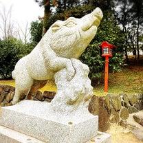 """初詣は""""和気清麻呂""""生誕の地、備前国にある""""和氣神社""""へ☆そこで300頭のイノシの記事に添付されている画像"""