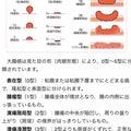 #回転寿司の画像