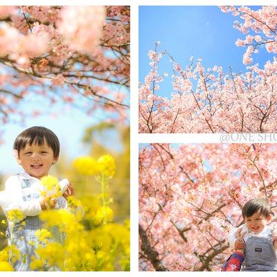 【春だからこそ残せる思い出】春のロケーション撮影の記事に添付されている画像