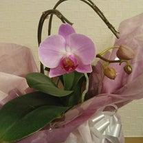 ナーシング和楽縁みどり☆園芸委員♪の記事に添付されている画像