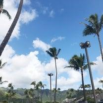 ハワイカイのメキシカンレストランの記事に添付されている画像