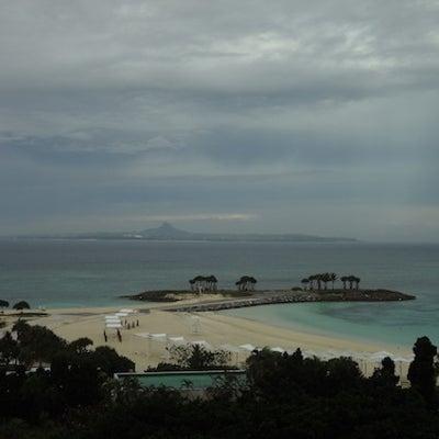 【沖縄路線バスの旅】2日目(2018年1月)美ら海水族館にハマるの記事に添付されている画像