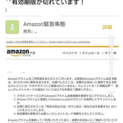 浜松は、サザンカのの垣根は、いつ切るの?の記事に添付されている画像