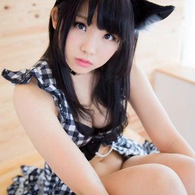 猫ブログ(゚∀゚)始めました(大嘘)の記事に添付されている画像