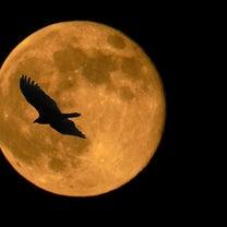 カシスミントの軌跡 『起の章』 第8話【赤い月】の記事に添付されている画像