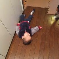 【動画あり 3つ子の弱肉強食の世界】  母ダウンの記事に添付されている画像
