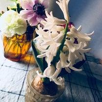 咲きました♪の記事に添付されている画像