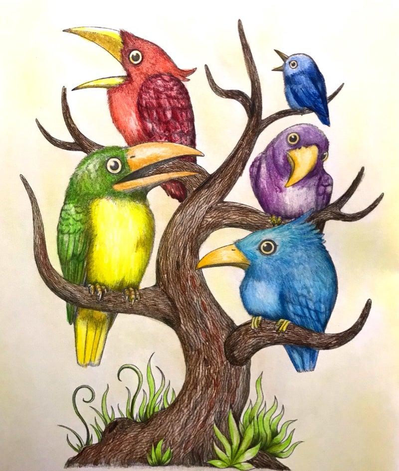 生き物たちの塗り絵 いろとりどりの 楽しいコロリアージュ生活大人の
