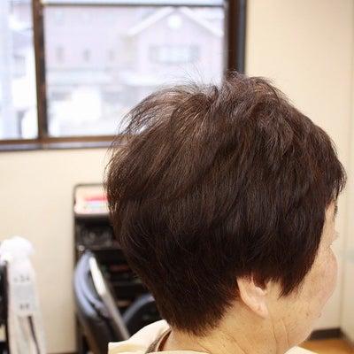 くせ毛のうねりが 出て 手入れしにくくなってきたの記事に添付されている画像