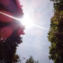 遠方からのK様|心と体の無意識の領域に働きかける八戸ナチュラルソウルの記事に添付されている画像