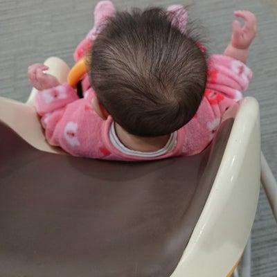 娘は7ヶ月にして、早くも潔癖症❔の記事に添付されている画像