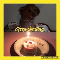 1歳のお誕生日☆の記事に添付されている画像