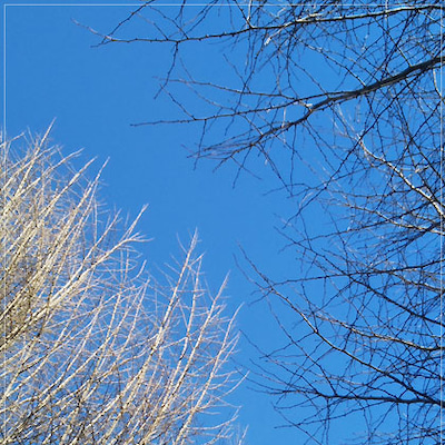 ◆冬季休暇中ですが~明日、明後日の営業時間✨の記事に添付されている画像