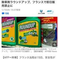 除草剤ラウンドアップ、フランスで販売中止の記事に添付されている画像