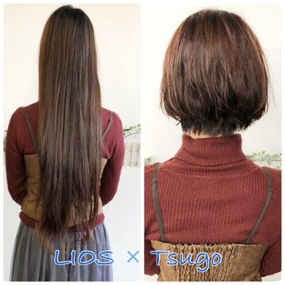 ドキドキのヘアドネーションでふんわりショートにの記事に添付されている画像