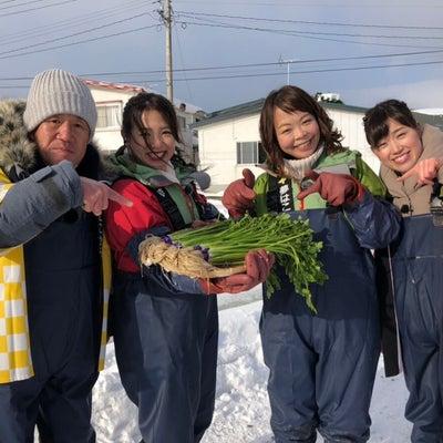 ハッピィ中継はラッシャー板前さんと一町田セリ!の記事に添付されている画像