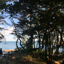 五浦の絶景と六角堂の記事に添付されている画像