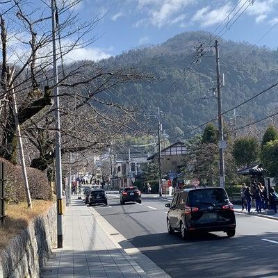 京都ーふたたび⑨|2日目「慈照寺<銀閣寺>」@20190113の記事に添付されている画像