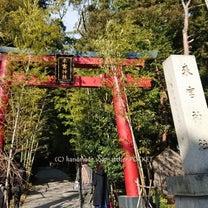 来宮神社へ♪の記事に添付されている画像