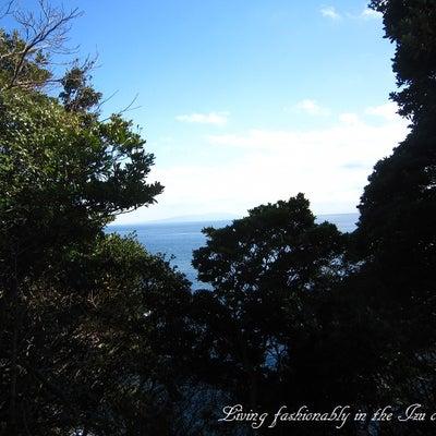海を眺めながらの庭作業の記事に添付されている画像
