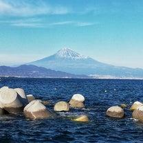 今日の一杯麺家 八丸(静岡市)の記事に添付されている画像