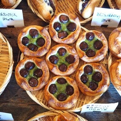 こはく。@奈良県奈良市の記事に添付されている画像