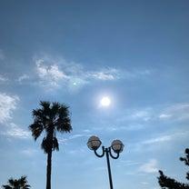 早朝のディズニーリゾートホテルの海辺のデッキテラスの記事に添付されている画像
