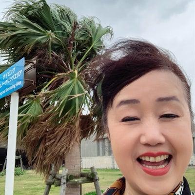 沖縄の海辺をお散歩。の記事に添付されている画像