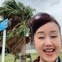 沖縄の海辺をお散歩。