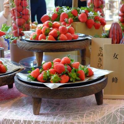 3種類の苺を食べ比べ 苺スイーツブフェ〜ショコラとの饗宴〜の記事に添付されている画像
