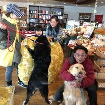 チョコちゃん、ナッツちゃん登場!の記事に添付されている画像