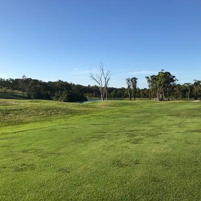 オーストラリアゴルフ事情の記事に添付されている画像