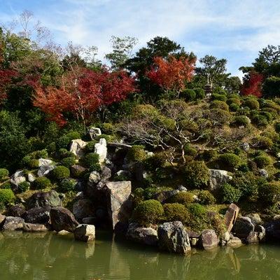 智積院の庭園の記事に添付されている画像