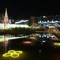 あしかがフラワーパーク 光の花の庭の記事に添付されている画像