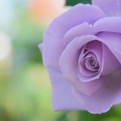 バイオレット・フレーム 紫色の浄化の炎の記事に添付されている画像
