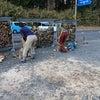 薪割り応援隊の画像